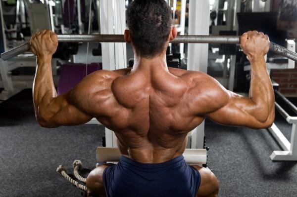 Самые громкие мышцы у женщины фото